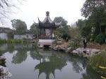 Ancient Pine Garden